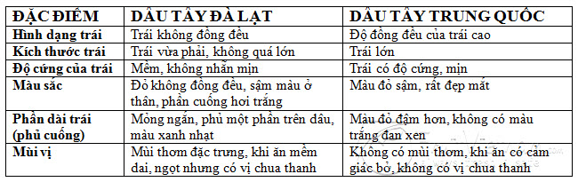 dau-tay-da-lat-dau-trung-quoc