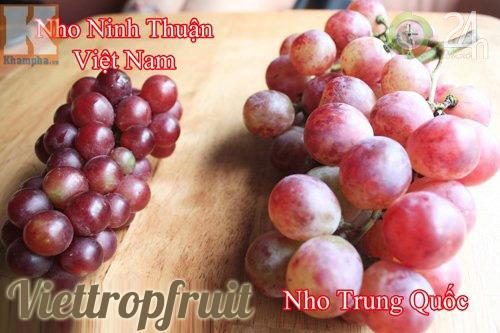 Nho Trung Quốc vs Nho Ninh Thuận